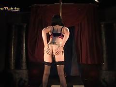 Seductive transsexual Desiree Hart pole dancing