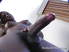 Super big cock black shemale Shakira