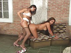 Kelly&Marjorie tranny duo in action