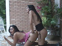 Lorena&Renata cute trannies in action