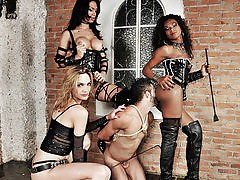 Spectacular TS Domme Trio In Action