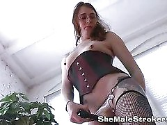 perky shemale in sexy stockings with a juicy ass