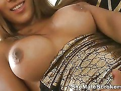 beautiful brunette shemale is showing her penis