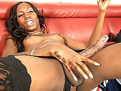 Chocolate beauty Tameka stroking off her long fat cock